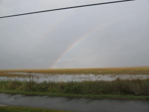 2011-11-28GATybee,_Rainbow